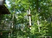 kletterwald03