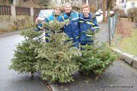 weihnachtsbaumaktion-07